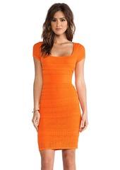 Catherine Malandrino Pointelle Shift Dress in Orange