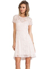 Nanette Lepore Lacy Not Racy Dress in Blush