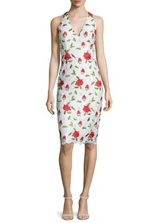 David Meister Sleeveless Floral-Embroidered Cocktail Dress